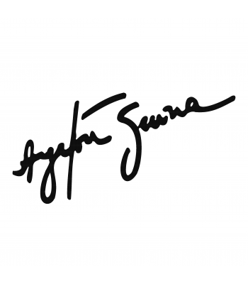 Handtekening Ayrton Senna