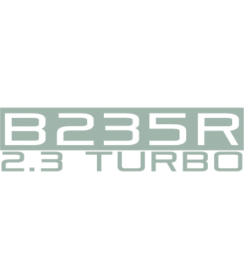 B235R