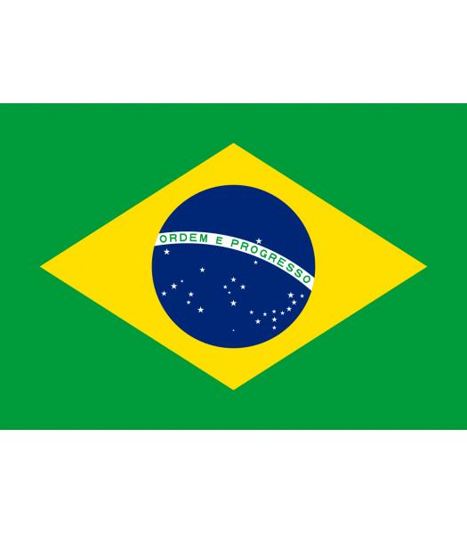 Braziliaanse vlag -