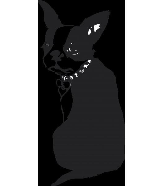 Dog - Dieren & Natuur