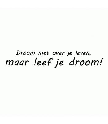 Droom niet over je leven, maar leef je droom!
