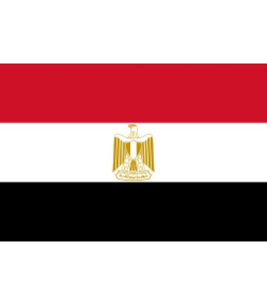 Egyptische vlag - Vlaggen & Werelddelen