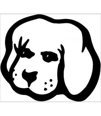 Hond6
