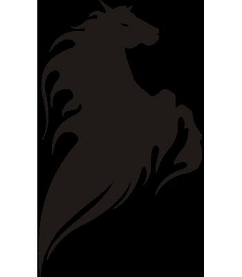 Paard11