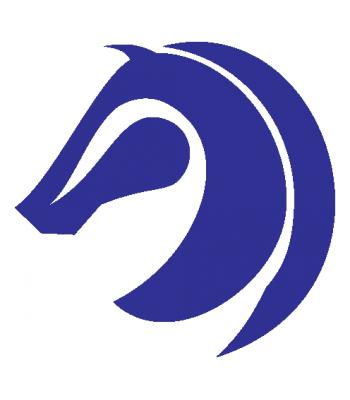 Paard2
