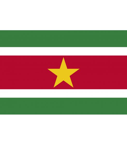 Surinaamse vlag - Vlaggen & Werelddelen