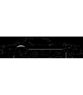 Trans Am silhouet rechts