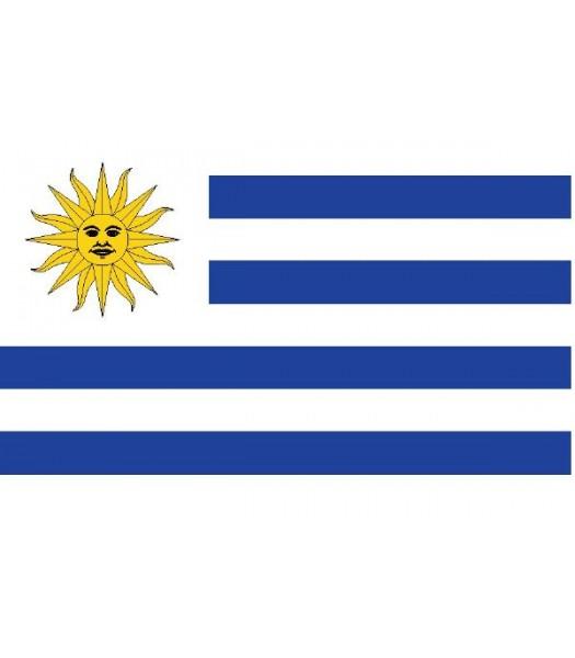 Uruguayaanse vlag - Vlaggen & Werelddelen