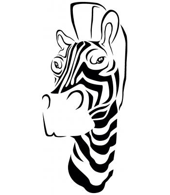 Zebra2 - Dieren & Natuur